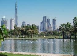 Арабские инвесторы создают новый исламский банк