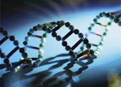 Cклонность к раку не заложена в генах