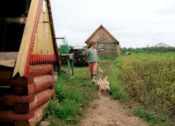 Подмосковные дачные поселки заменят кладбищами
