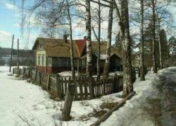 Финны хотят скупить землю в приграничных с РФ районах