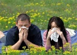 Мифы об аллергии