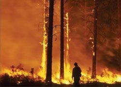 Иркутская область объята дымом из-за лесных пожаров