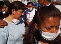 У свиного гриппа есть потенциал пандемии