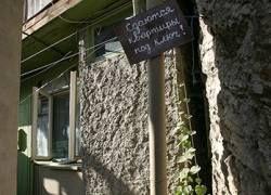 Отпуск в Крыму: секреты сдачи жилья на курортах