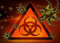 Какие пандемии угрожают человечеству