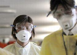 Свиной грипп нельзя сдержать в национальных границах
