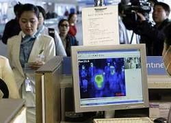 Компании отменяют командировки из-за свиного гриппа
