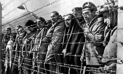 Двоим авторам письма из Освенцима удалось выжить