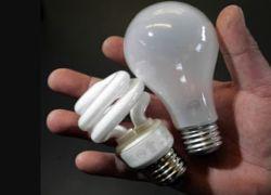 Энергосберегающие лампочки вредят здоровью