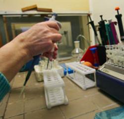 Тест ДНК помог найти убийцу 30 женщин