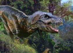 Динозавров убил не метеорит