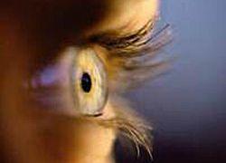 Витамин В1 – идеальный кандидат для лечения слепоты