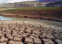 В Бразилии зарегистрирована рекордная засуха