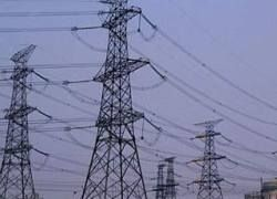 Китай добудет электричество из куриного помета