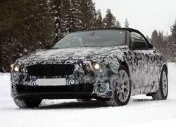 Кабриолет BMW 6-й серии приступил к первым тестам