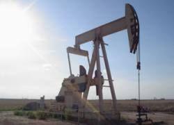 США не смогут быстро отказаться от импорта нефти