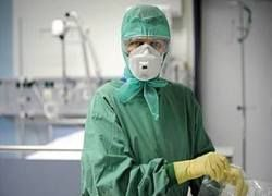 Свиной грипп угрожает миру скрещиванием с птичьим