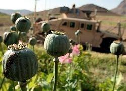 Намерен ли Обама побеждать в Афганистане?