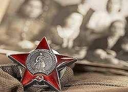 Жуков и Сталин сожгли в огне войны русский народ