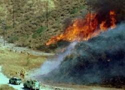Пожар опустошил виллы Санта-Барбары