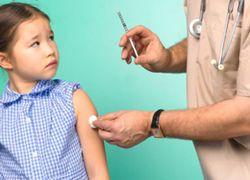 Свиной грипп: прививаться или нет?