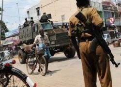 """На Шри-Ланке убито более 80 тамильских \""""тигров\"""""""