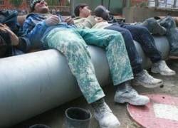 Безработные мигранты в РФ создают банды для грабежей