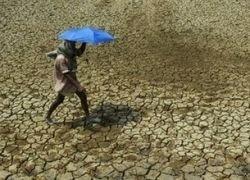 Жертвами жары в Индии стали 130 человек