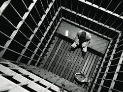 Сбежавший чиновник-казнокрад семь дней прятался в лесу