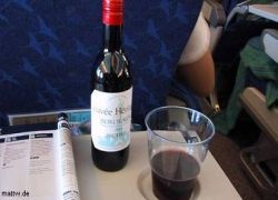 В самолетах пьют не только русские