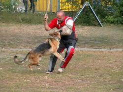 Житель Чувашии убил обидчика своей собаки