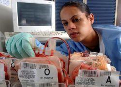 Ученые США научились производить кровь без доноров