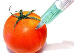 Американские врачи призвали к мораторию на ГМО