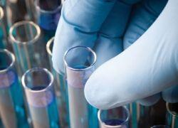 Cредство от рака простаты успешно проходит испытания