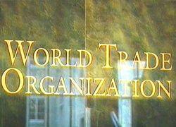 Действительно ли Россия хочет вступить в ВТО?