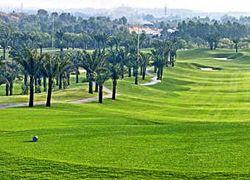 Вьетнам посчитал гольф угрозой сельскому хозяйству