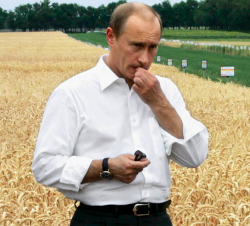"""Россия втягивает Украину в \""""хлебную войну\"""""""