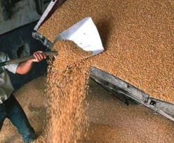 Египет снова проверяет арестованное российское зерно