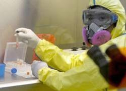 Свиной грипп подтвержден в 75 странах