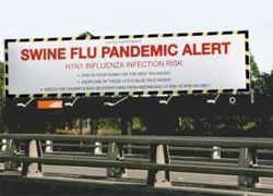 """В Бразилии обнаружена новая форма \""""свиного гриппа\"""""""