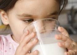 Все о пользе кисломолочных продуктов