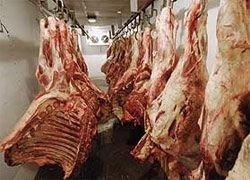 Импорт мяса в РФ сократится в 2009 году до 25%