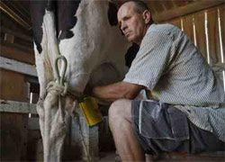 Список разрешенной молочной продукции Беларуси удвоен