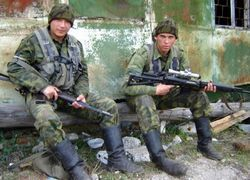 Воюющий Кавказ - результат силового упрямства