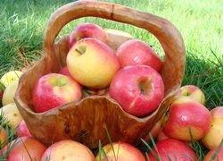 Яблоки - от малокровия и проблем с пищеварением