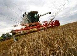 Аграрные перспективы России