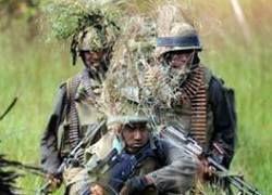 На Шри-Ланке найдены сокровища тамильских тигров