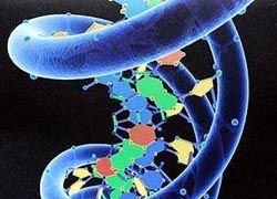Стивен Хокинг призывает к апгрейду ДНК