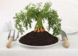 Органическая еда не отличается от обычной