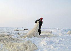 Россия готовит десант на Северный полюс